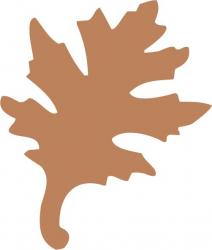 Sticker decorativ Frunza Stejar