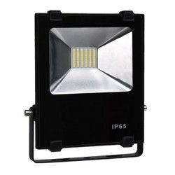 Proiector cu LED SMD RSMDR10W
