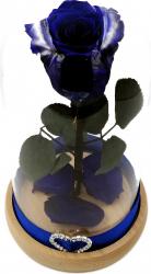 Trandafir Natural Criogenat Wide Flowers albastru royal pe pat de petale in cupola mica de sticla