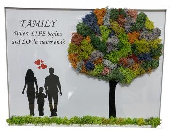 Tablou licheni FAMILY 20x30cm Tablouri