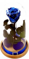 Trandafir Natural Criogenat Wide Flowers albastru metalizat pe pat de petale in cupola mica de sticla