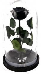 Trandafir Criogenat Wide Flowers mare negru pe pat de petale in cupola mare de sticla cu baza neagra