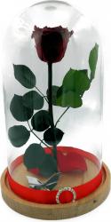 Trandafir Natural Criogenat Wide Flowers rosu pe pat de petale in cupola medie de sticla