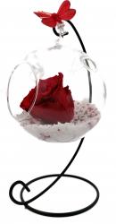 Trandafir Criogenat natural Wide Flowers rosu pe pat de pietricele in bol de sticla cu fluture pe picior metalic