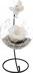 Trandafir Criogenat Wide Flowers alb pe pat de pietricele in bol de sticla cu fluture pe picior metalic