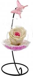 Trandafir Criogenat Wide Flowers bicolor roz-alb pe pat de pietricele in bol de sticla cu fluture pe picior metalic