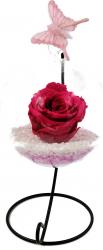 Trandafir Criogenat Wide Flowers roz fucsia pe pat de pietricele in bol de sticla cu fluture pe picior metalic