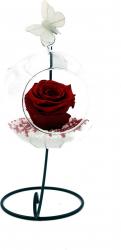 Trandafir Criogenat Wide Flowers visiniu pe pat de pietricele in bol de sticla cu fluture pe picior metalic