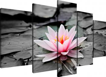 Tablou modular din cinci elemente - Lotus roz Tablouri