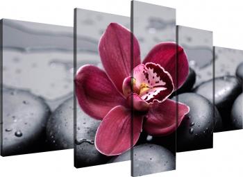 Tablou modular din cinci elemente- Orhidee roz Tablouri
