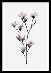 Poster inramat Crenguta cu flori 30x45 cm Tablouri