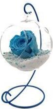 Trandafir Criogenat Wide Flowers turcoaz pe pat de pietricele in bol de sticla cu picior metalic albastru