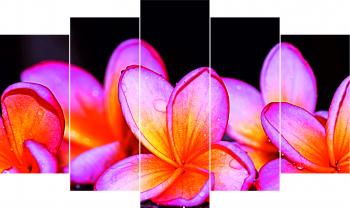 Set Tablouri Canvas 5 Piese Flowers 100 x 60 cm Tablouri