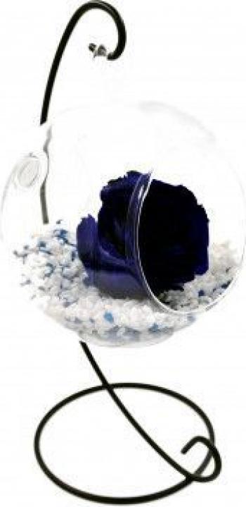 Trandafir Criogenat Wide Flowers albastru royal pe pat de pietricele in bol de sticla cu bula pe picior metalic