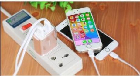 Incarcator retea Usams U2+ Dual USB HTC One E9 Plus Rose Gold Incarcatoare Telefoane