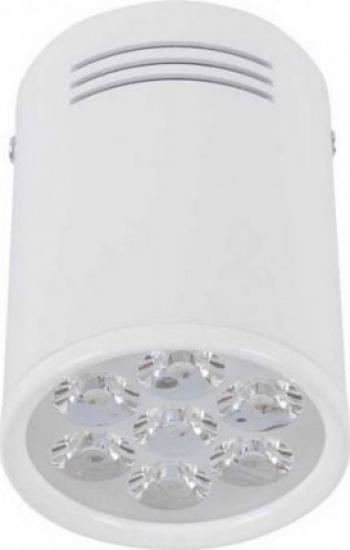 SPOT SHOP LED 5945 Corpuri de iluminat