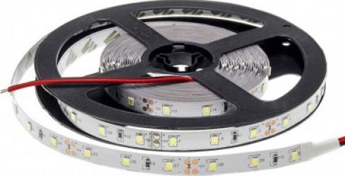 Banda LED IP20 Proffesional Edition 4.8W/m Alb Cald Corpuri de iluminat