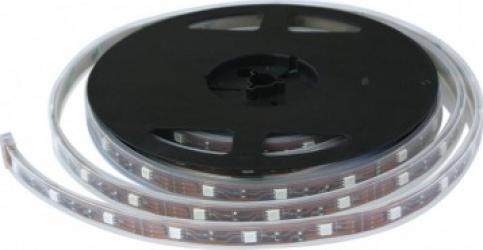 Banda LED SMD 3528 - 120 leduri Alb Rece 6000 K IP20 Corpuri de iluminat