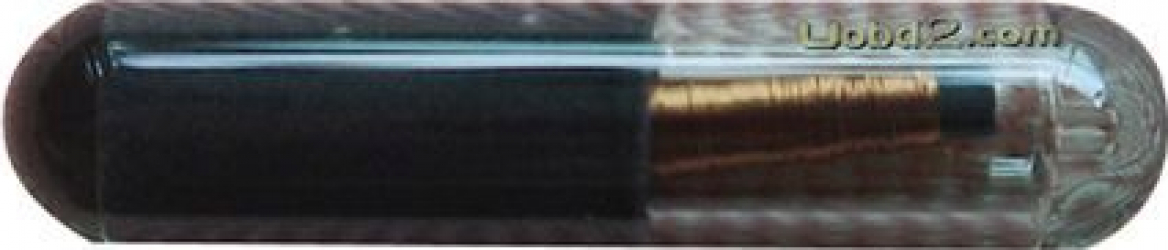 Cip transponder T5 ID 20 sticla Scule auto and Accesorii
