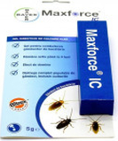 Insecticid gandaci de bucatarie Max Force IC gel 5g Bayer Maxforce