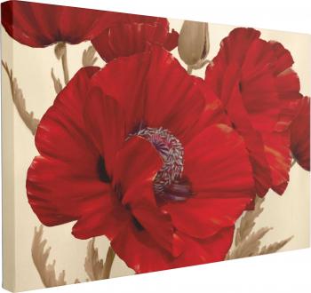 Tablou Canvas Dansul Macilor 60 x 90 cm 100 Poliester Tablouri