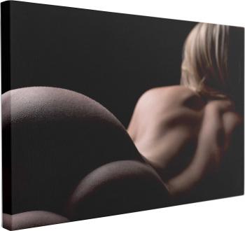 pret preturi Tablou Canvas Femeie Blonda Nud 40 x 60 cm 100 Bumbac