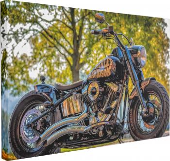 Tablou Canvas Motocicleta Harley Davidson 70 x 100 cm 100 Poliester Tablouri