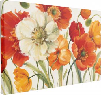 Tablou Canvas Poppies Melody 70 x 100 cm 100 Bumbac Tablouri