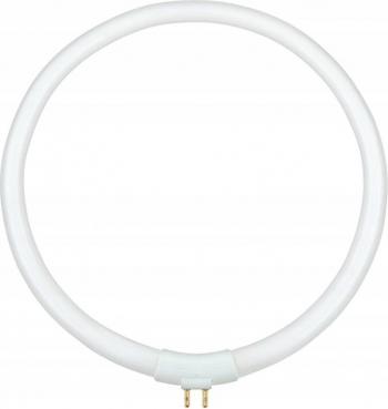 Bec Rotund T4 22W Tub Neon 4 Pini Diametrul 17cm pentru Lampa cu Lupa