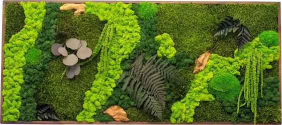 Tablou Cu Licheni Stabilizati Si Plante Naturale Stabilizate Piece Of Nature Decoriada 90 x 40 cm Tablouri