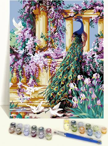 Set pictura pe numere Tablou cu Paun colorat Tablouri