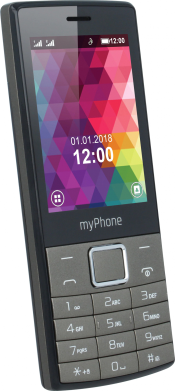 Telefon mobil MyPhone 7300 Dual SIM Negru Telefoane Mobile