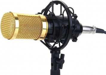 Microfon Profesional BM800 cu inregistrare vocala si Karaoke Gold Negru
