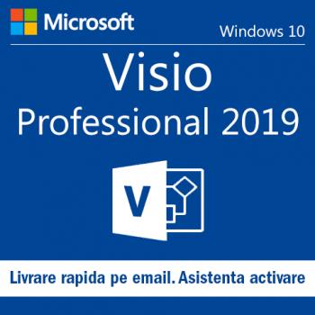 Visio Professional 2019 Retail Licenta Permanenta