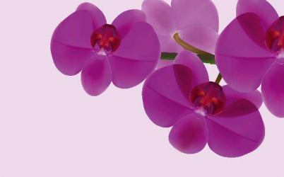 Panou bucatarie protectie plita aragaz antistropire print UV model 3 Orhidee Violet 600x600 mm Placi decorative