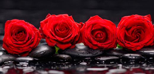 Panou bucatarie protectie plita aragaz antistropire print UV model 4 Trandafiri Rosii 600x500 mm