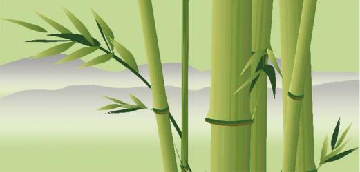Panou bucatarie protectie plita aragaz antistropire print UV model Bambus cu Fundal Deschis 600x500 mm