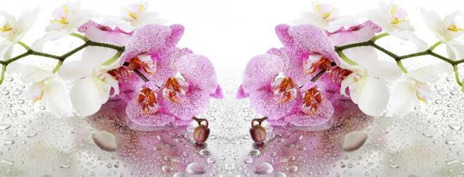 Panou bucatarie protectie plita aragaz antistropire print UV model Orhidee 31 600x500 mm