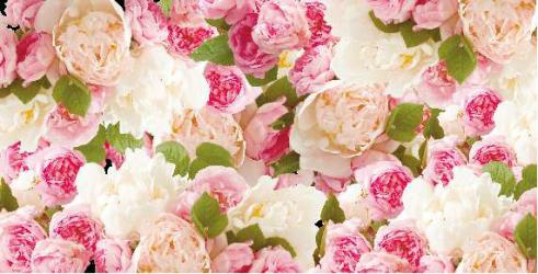 Panou bucatarie protectie plita aragaz antistropire print UV model Ornament Floral Roz 600x500 mm Placi decorative