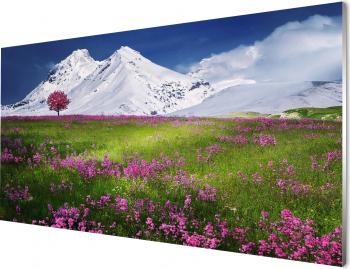 Tablou cu Peisaj de primavara Un camp de flori violet de primavara si munti acoperiti de zapada1000x500mm