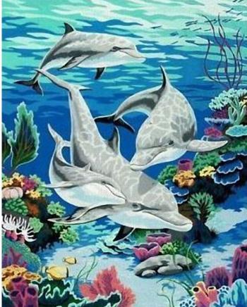 Set pictura pe numere Tablou cu delfini Tablouri