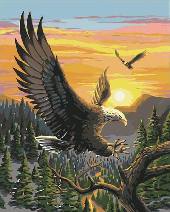 Set pictura pe numere Tablou cu Vulturi Tablouri
