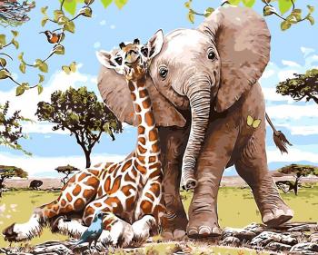 Set pictura pe numere tablou girafa si elefant Tablouri