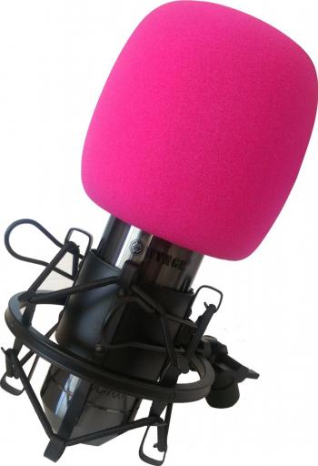 Microfon profesional pentru studio de inregistrari cu fir DL-700