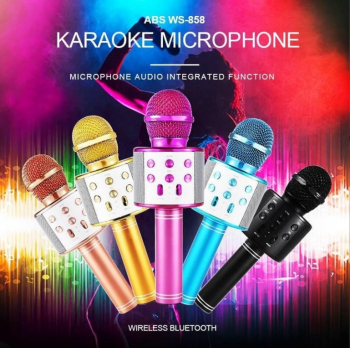 Microfon Karaoke WS-858 Wireless reincarcabil