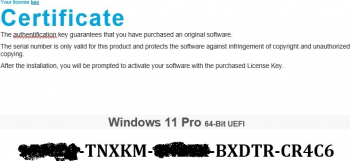 Windows 11 Pro RETAIL USB Flash All languages 64 bit UEFI
