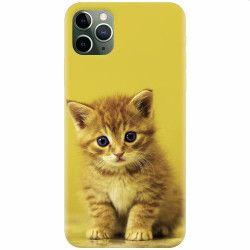 Husa silicon pentru Apple iPhone 11 Pro Baby Kitten