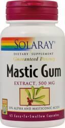 Mastic Gum Solaray Secom 45cps