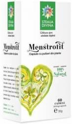 Menstrofit 500mg Santo Raphael 60cps