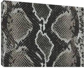 Piele de sarpe 1 - Tablou canvas - 52x70 cm Tablouri